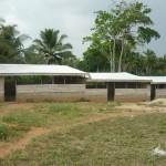 Het gebouw voor de veeboerderij.